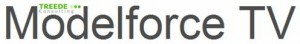 LogoModelforceTV